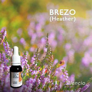 Flores de Bach: Brezo (Heather) - Silencio