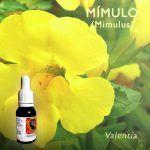 Flores de Bach: Mimulo (Mimulus)