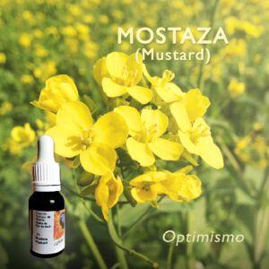 Flores de Bach: Mostaza (Mustard) - Optimismo