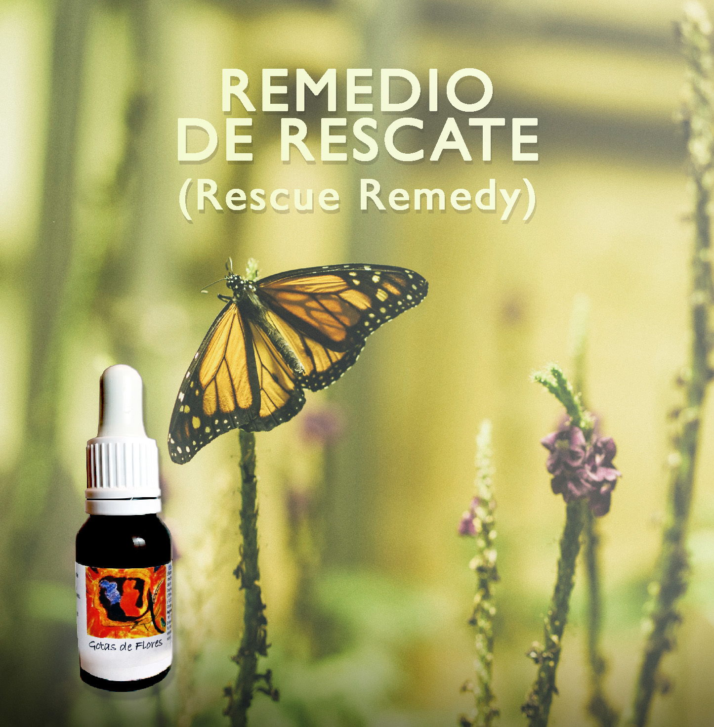 Flores de Bach: Remedio de rescate (Rescue Remedy)