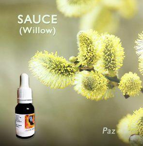 Flores de Bach: Sauce (Willow)