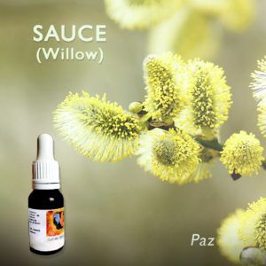 Flores de Bach: Sauce (Willow)