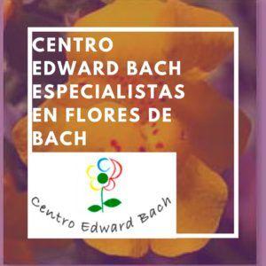 terapia con flores de bach