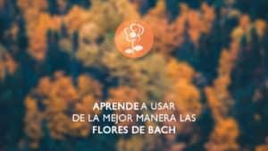 Centro Edward Bach - Aprende a usar las flores de bach