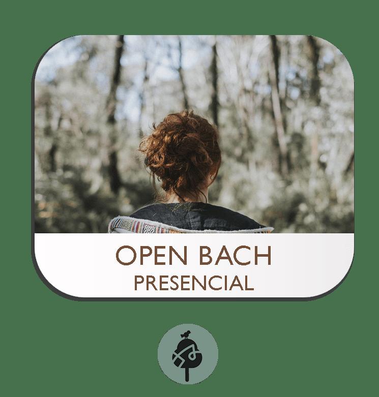 Curso presencial de Flores de Bach Nivel Básico (Open Bach)